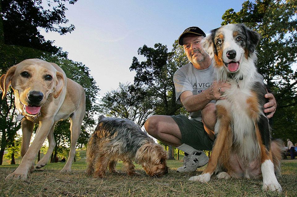 Dogs and owner in Dakota Dog Park